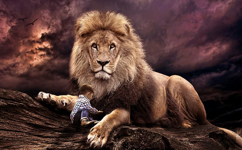 Toddler and lion