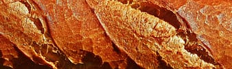 Brown and white leaf in close up photography