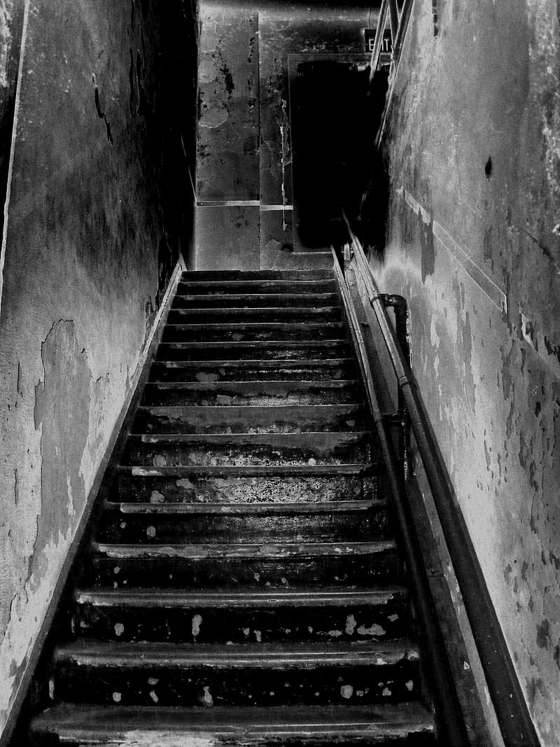 Grayscale photo of concrete stair