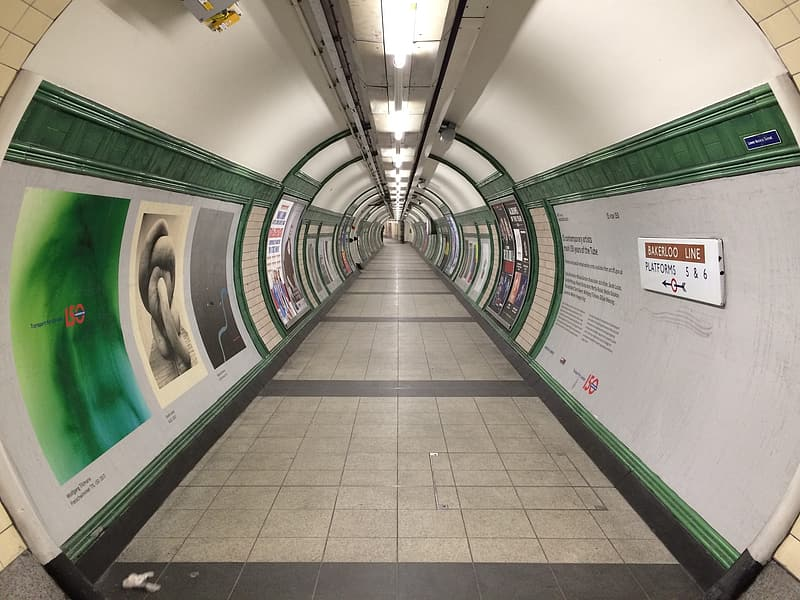 White and green tunnel way