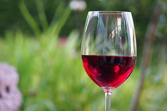 Red wine filled wine glass