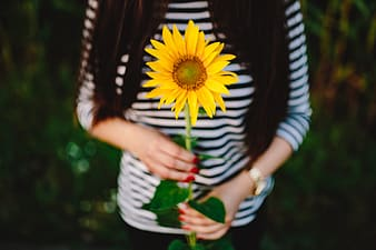 Young couple with sunflower