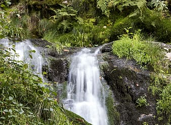 Water falls in the middle of green grass