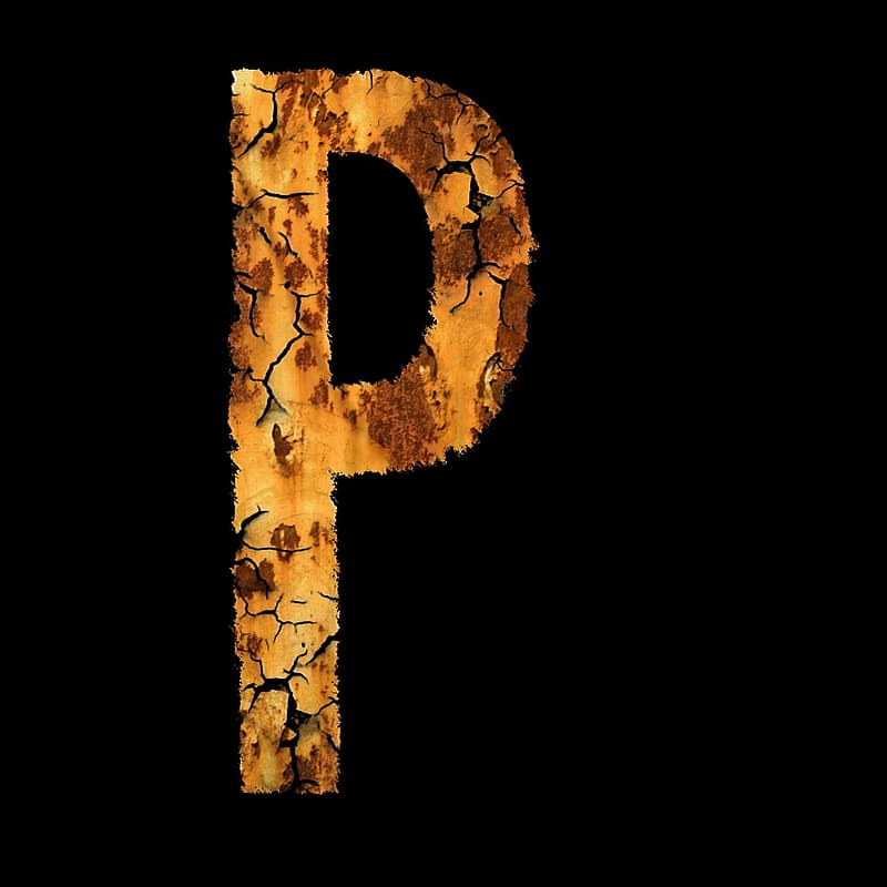 Brown and black floral letter p