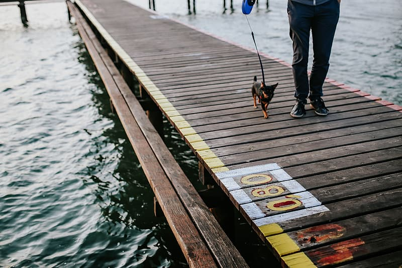 Wooden pier by the lake