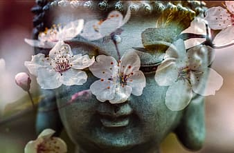 Buddha surrounded by pink flowers