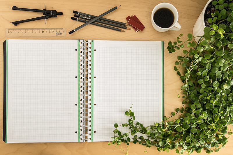 White and green graphing notebook