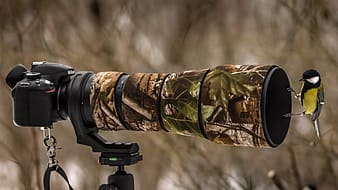 Tree camouflage DSLR camera with bird