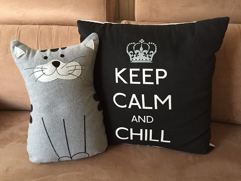 Cat-themed and black pillows on brown couch
