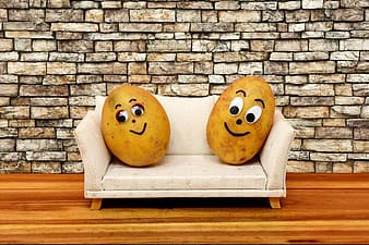 Two potatoes on couch