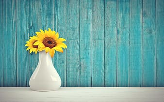 Two yellow sunflowers in white ceramic vase