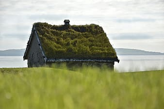 Brown wooden house on green grass field near body of water during daytime