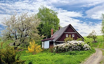 Maroon and white wooden house near trees