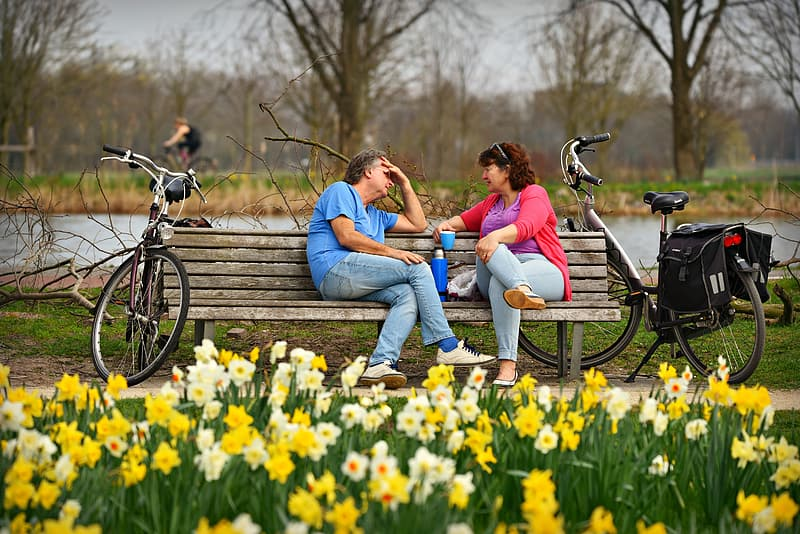 Couple sitting on brown wooden bench during daytime