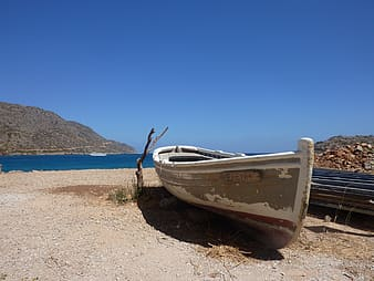 White and gray boat on shore during daytime