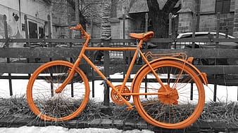 Selective color of orange bicycle
