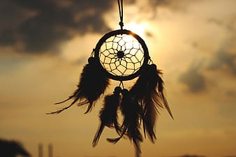 Feather dream catcher silhouette