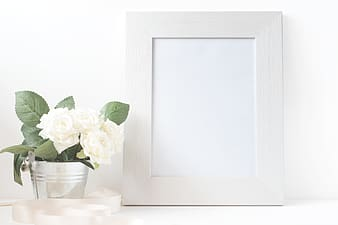 Photo frame beside potted white flower