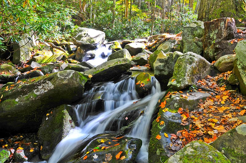 Time-lapse photography of stream