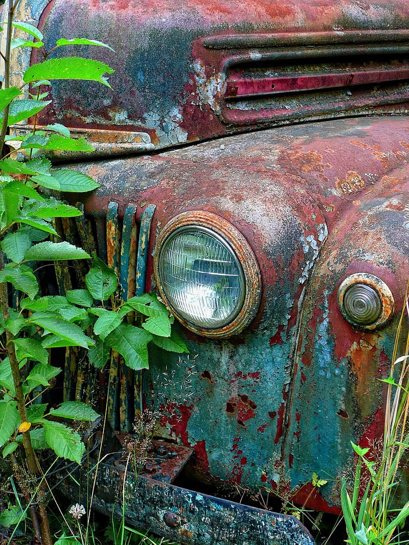 Rusted classic vehicle near plants