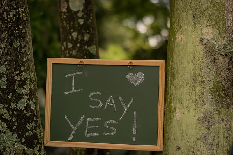 Black chalkboard with i say yes text