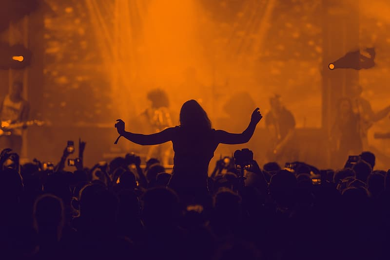Silhouette of people on concert