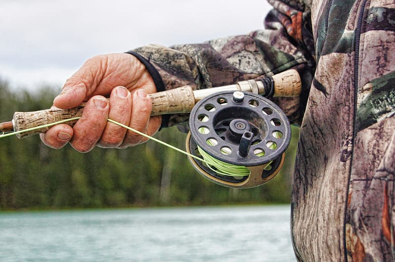 Person holding fishing rod