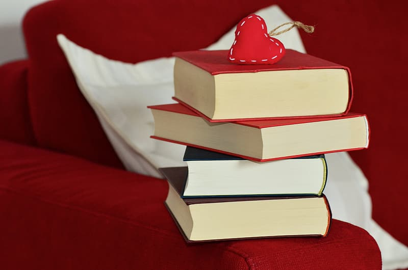 Stack of books on red couch