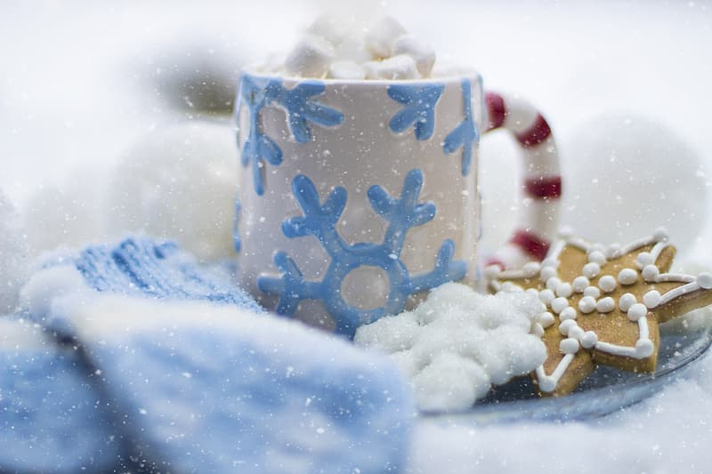 White and blue ceramic mug beside biscuit