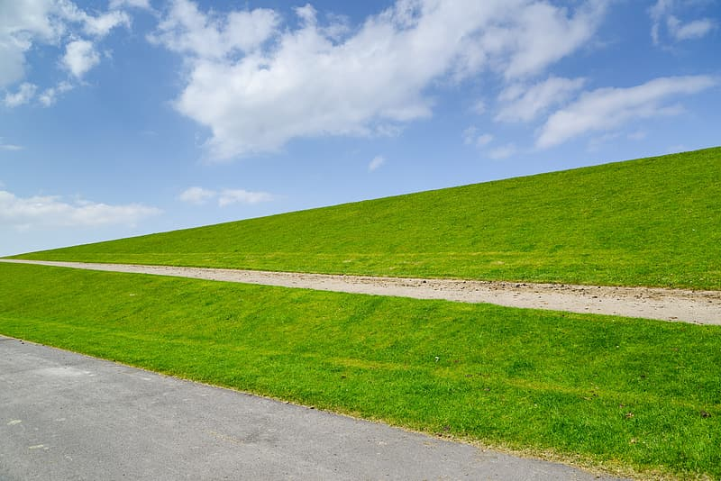 Green grass field under blue sky during daytime
