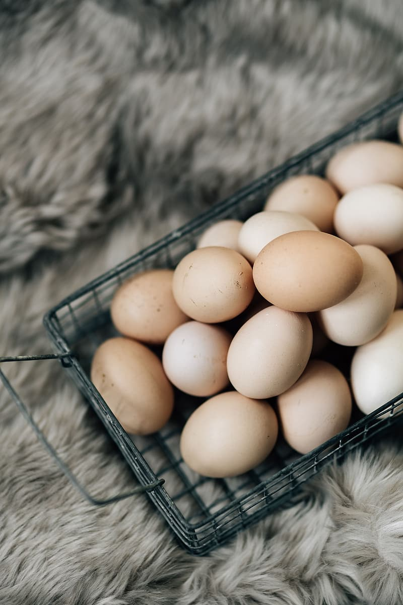 Brown eggs on stainless steel tray