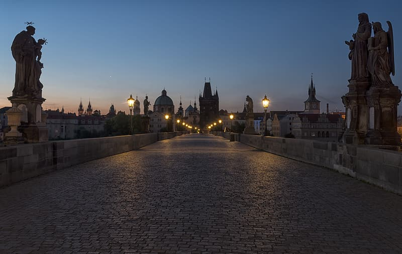 Gray concrete road between statues under clear blue sky at nighttime