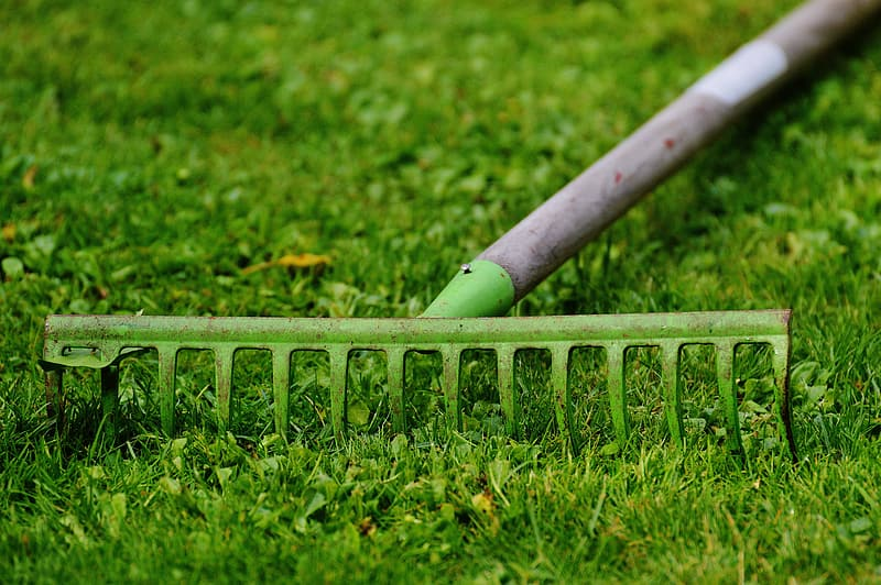Brown and green garden rake on green grass