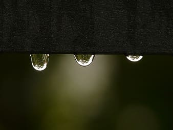 Macro shot photography of water drop