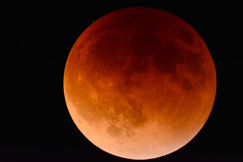 Shallow focus of red moon