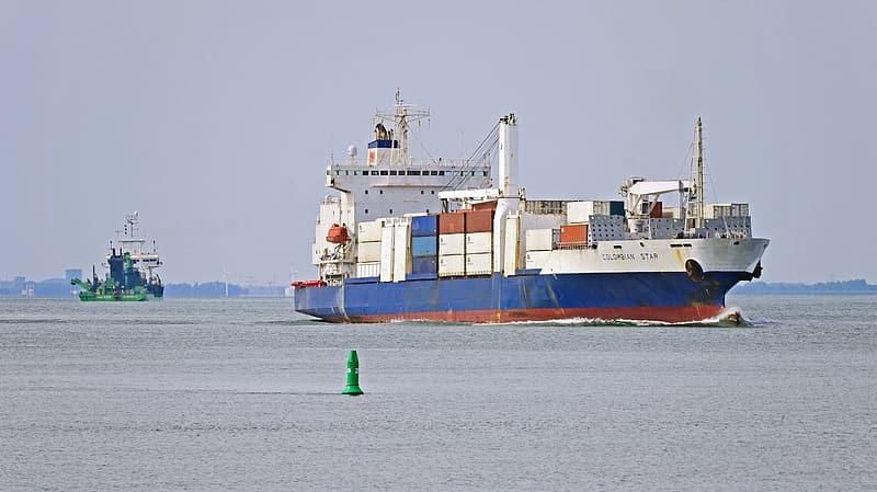 White and blue cargo ship during daytime