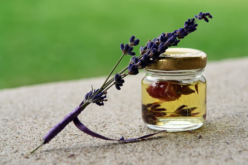 Purple lavender flower and clear glass jar