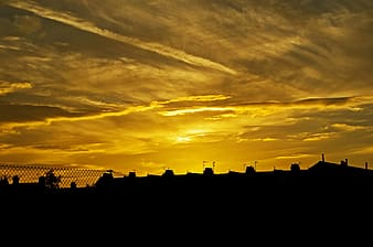 Silhouette photo of houses