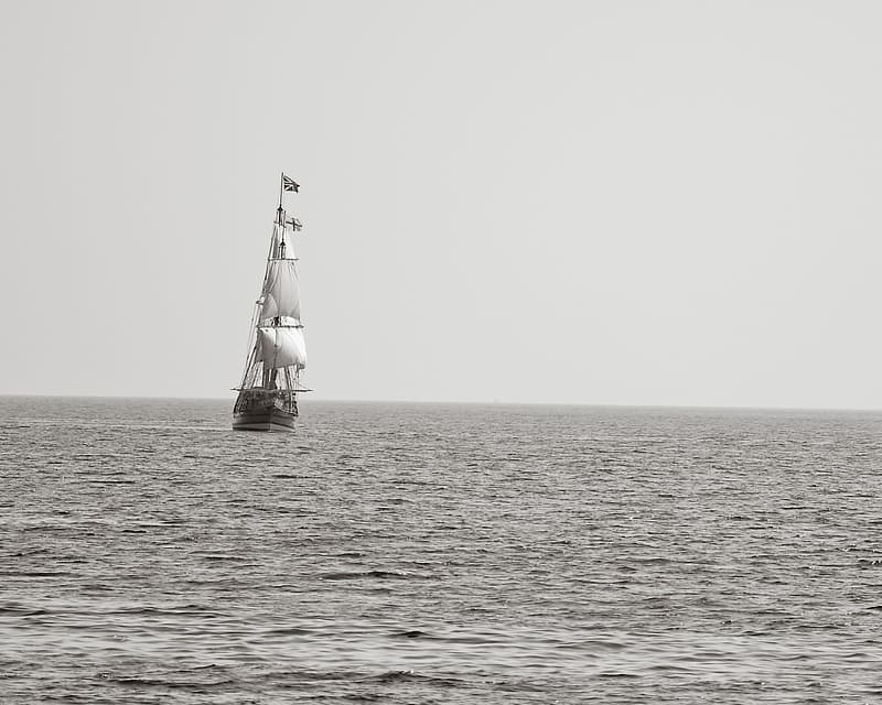 White and gray galleon ship on body water