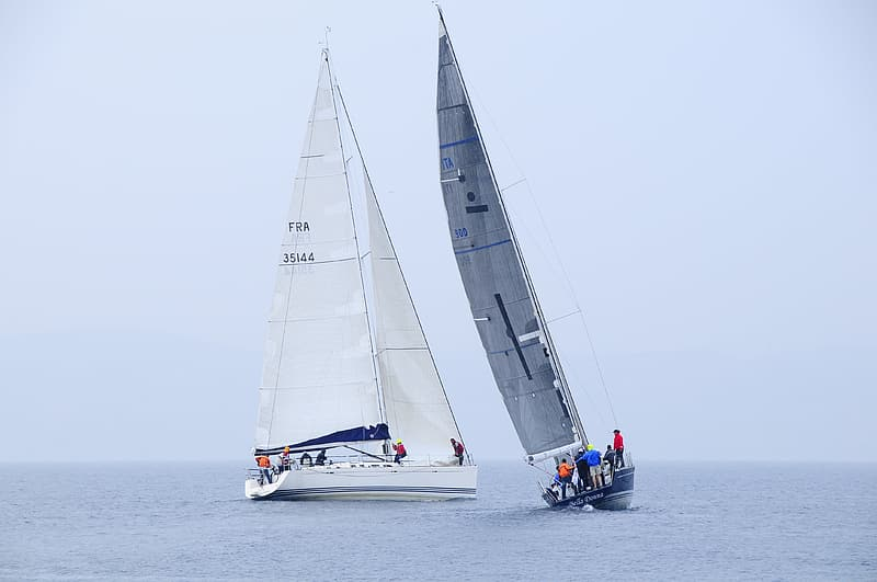Two white and gray sailboats on body of water
