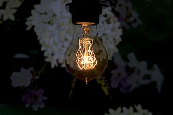 Lighted LED bulb