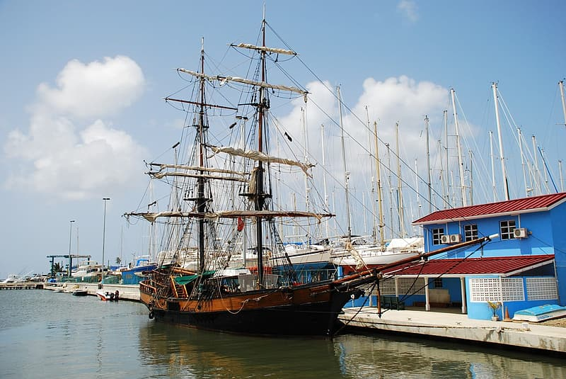 Black and brown galleon on body of water