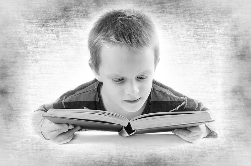 Boy reading book grayscale photo