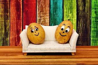 Two potatoes on sofa with multicolored background