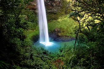 Waterfall surrounded with trees