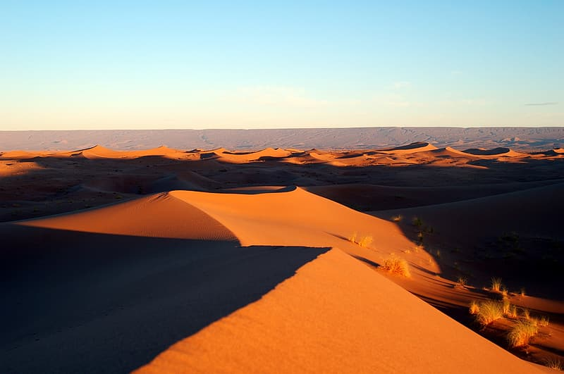Photography of desert during sunset