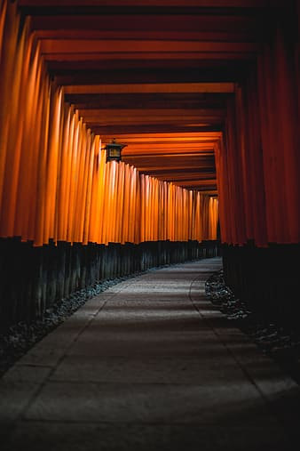 Lighted tunnel