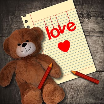 Brown teddy bear on white ruled paper
