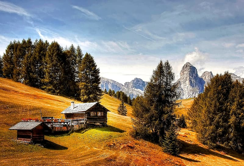 Brown wooden house on hills with pine trees