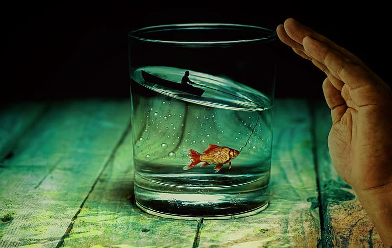 Fish inside the clear drinking glass